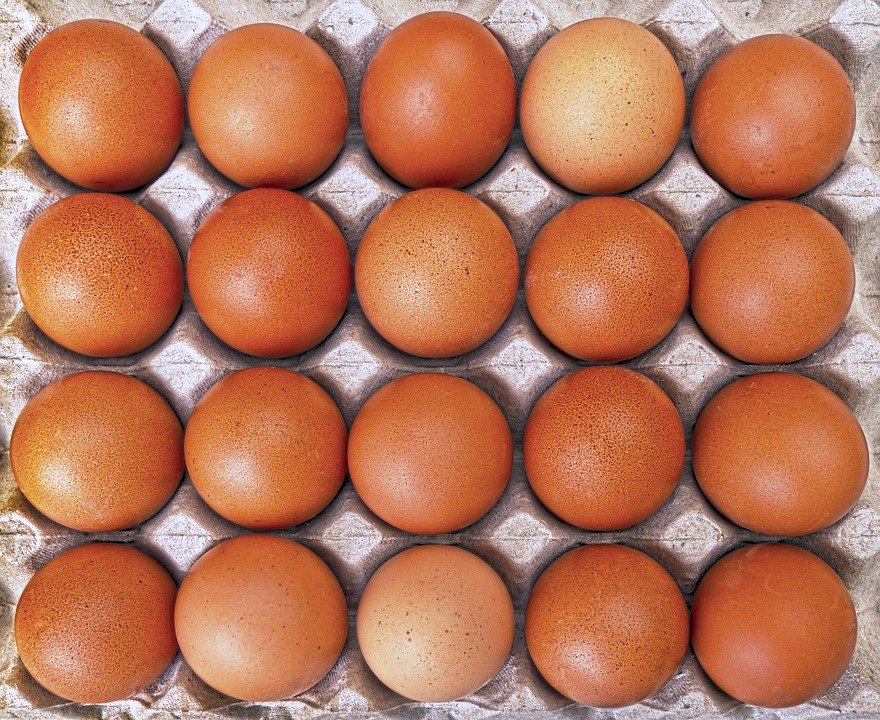 koolhydraatarm dieet eieren