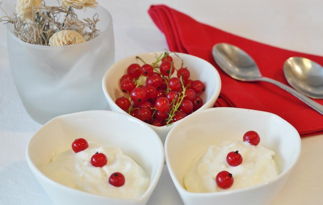 koolhydraatarme frozen yoghurt