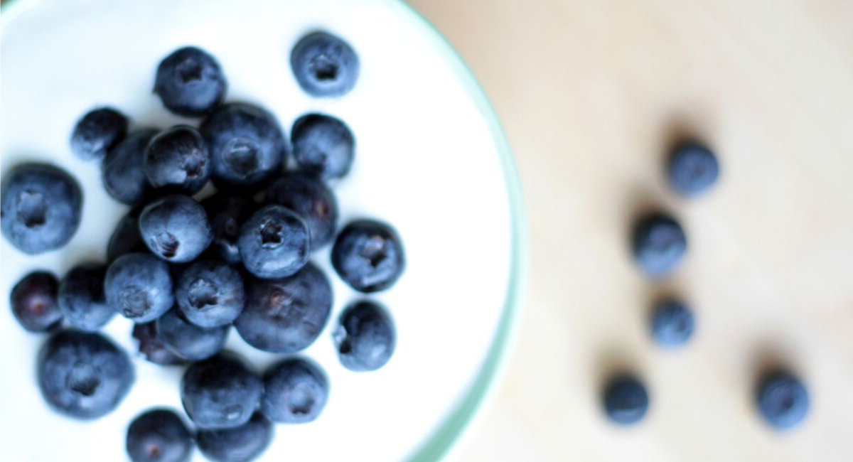 griekse yoghurt met fruit